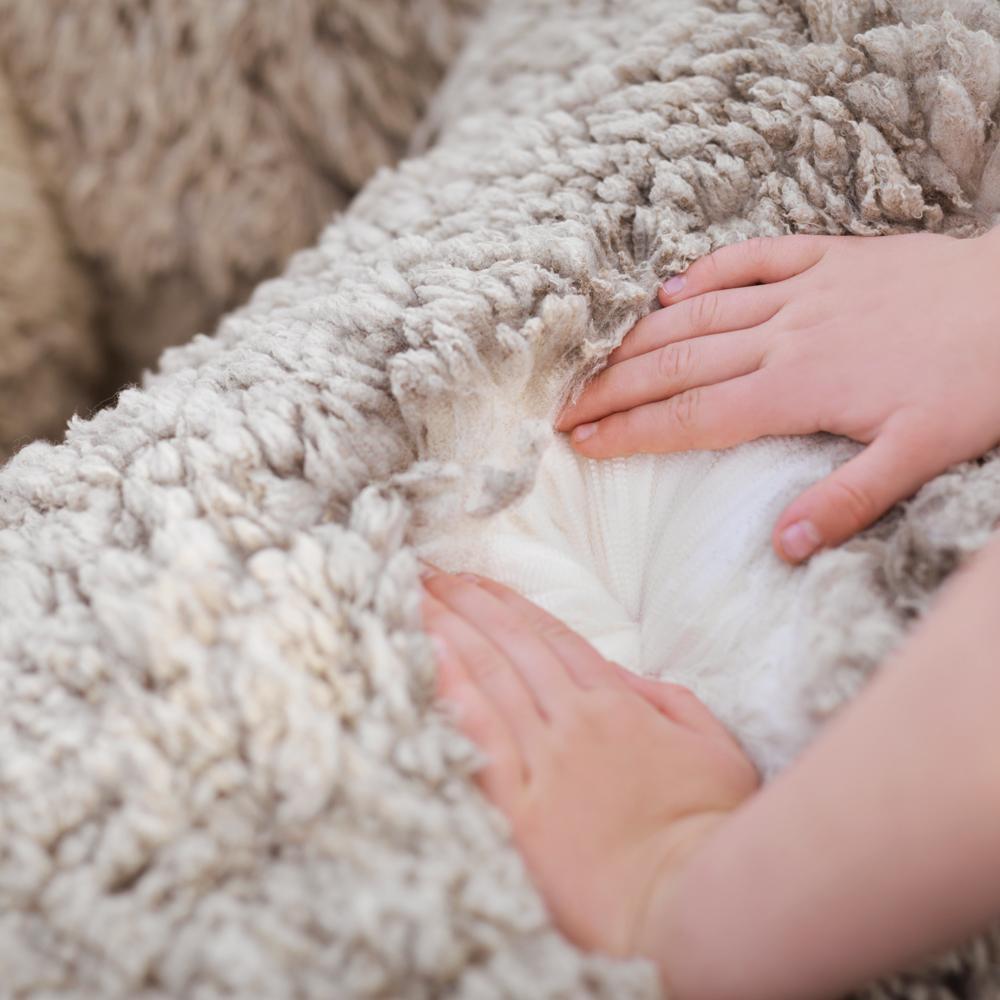 Ce trebuie sa stii despre lana de merinos?
