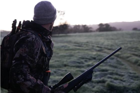 Vrei să devii vânător? Ce ar trebui să știi despre pașii care trebuie urmați?